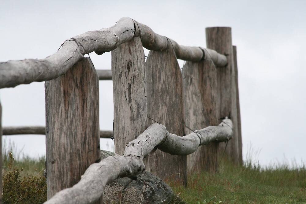 Old fence by Vikki Shedden Photography