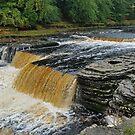 Aysgarth Falls by Kat Simmons
