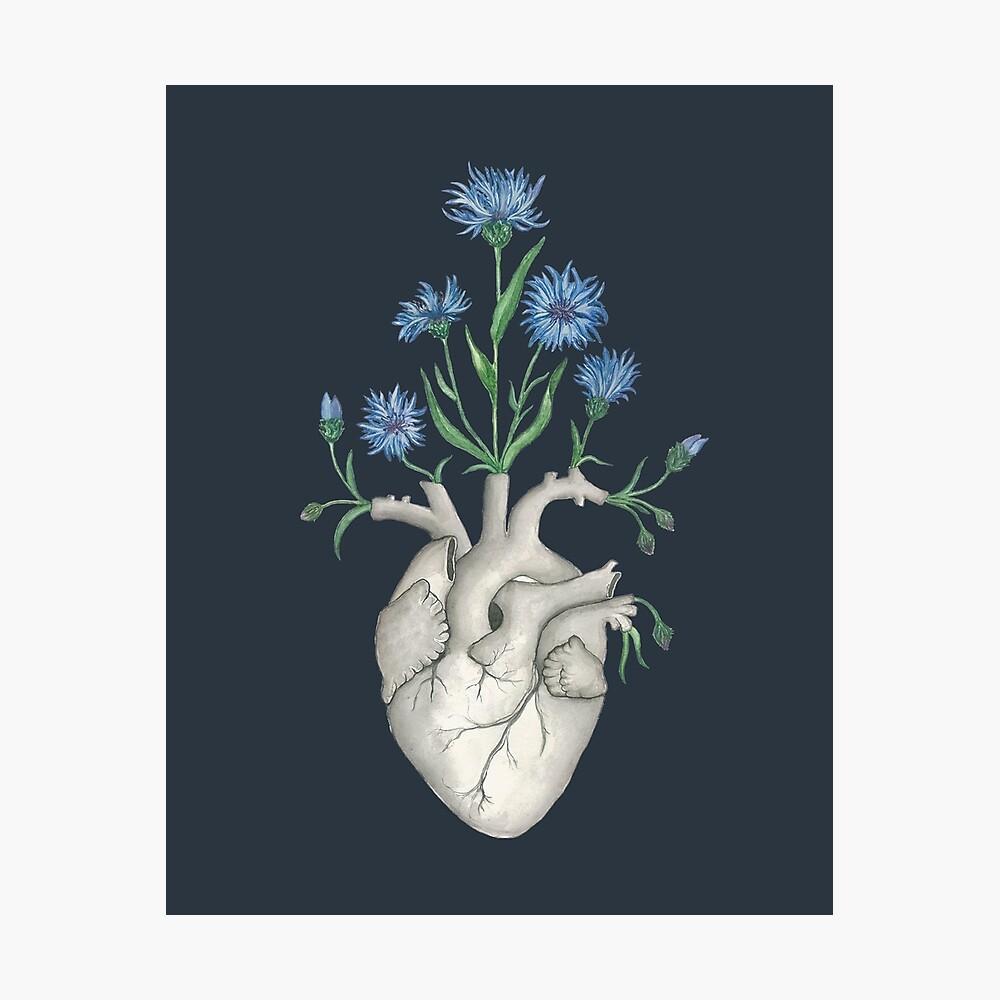 Floral Heart: Human Anatomy Cornflower Flower Halloween Gift Photographic Print