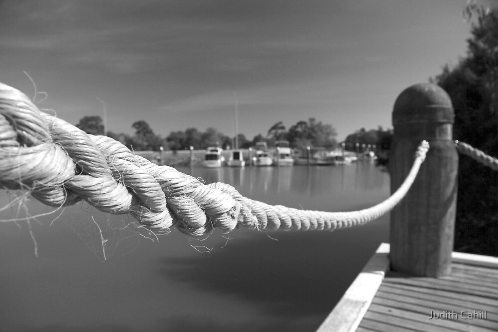 Tied Up by Judith Cahill