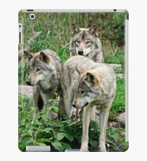 The Brat Pack iPad Case/Skin