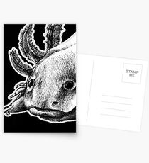 Axolotl Postcards