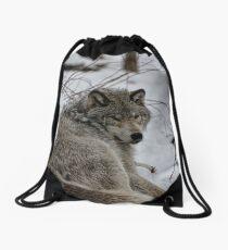 Timberwolf - Parc Omega, Montebello Drawstring Bag