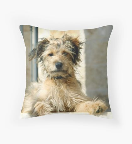 Have to say Throw Pillow