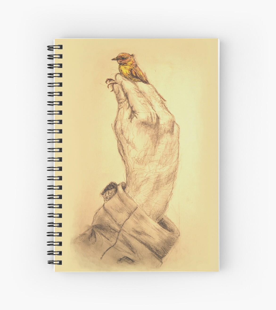 A Bird in the Hand  by Cailan Jackson