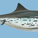Ichthyosaur: Nannopterygius by GaffaMondo
