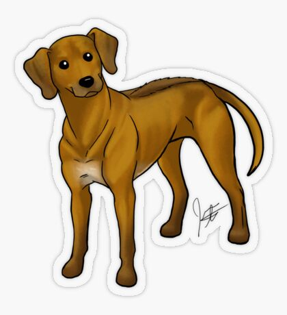 Rhodesian Ridgeback Transparent Sticker