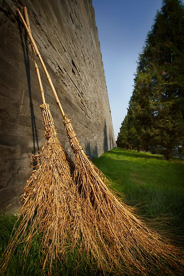 Straw Brooms and  Forbidden Palace by Tim  Geraghty-Groves