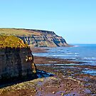 North Yorks Coast  by Trevor Kersley