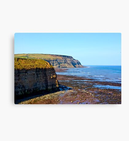 North Yorks Coast  Canvas Print