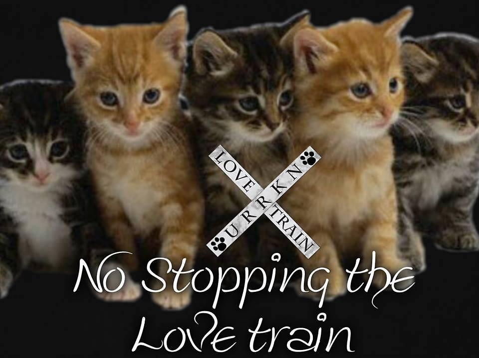 No Stopping A Love Train by URRKN