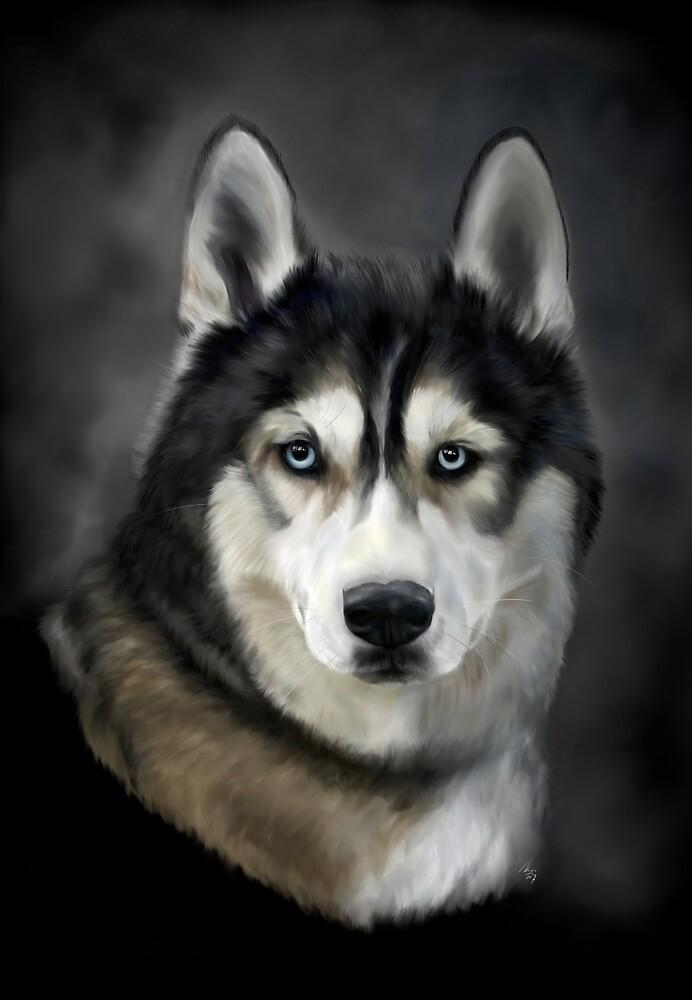 Siberian Husky by Fjfichman
