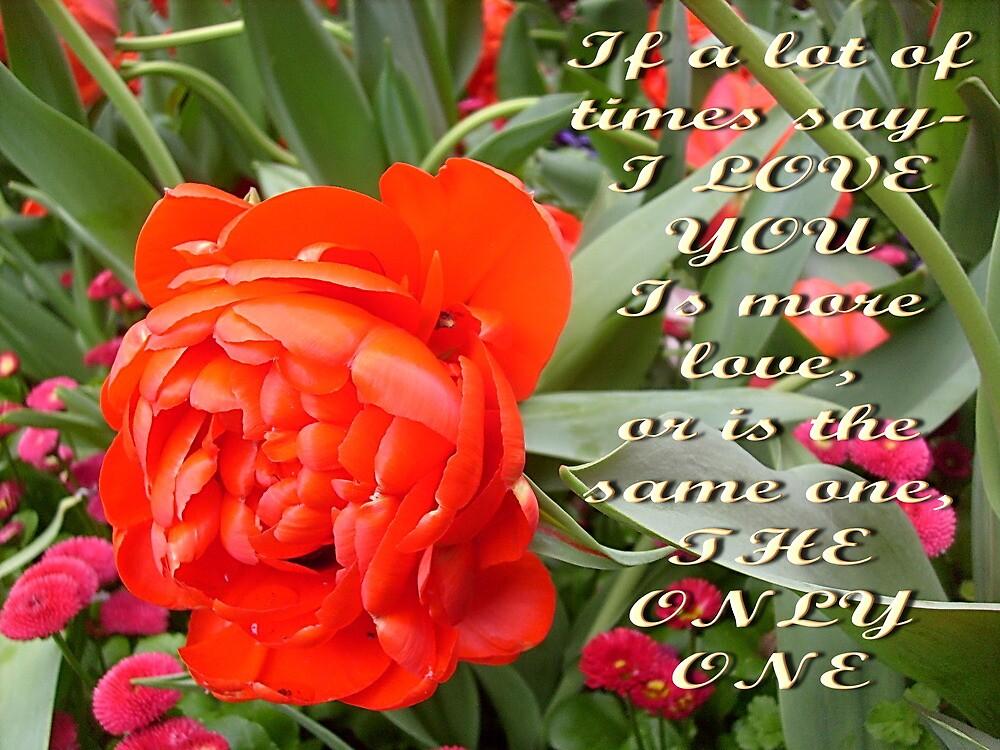 Love by Ana Belaj