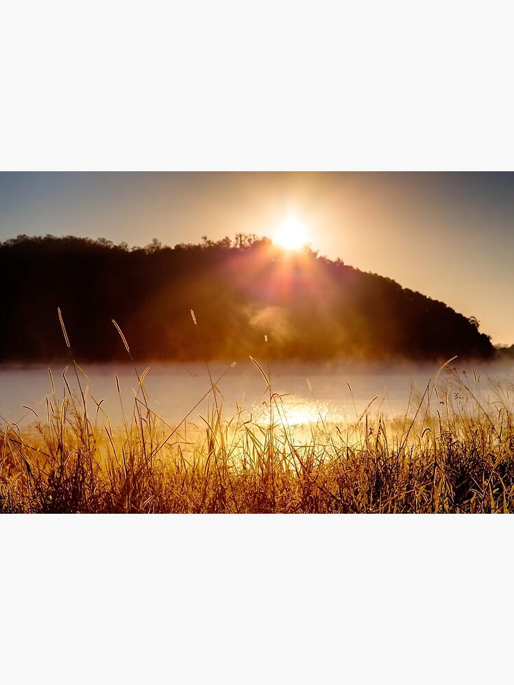 Sunrise by fardad