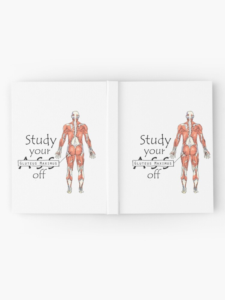 Alternate view of Study your Gluteus Maximus Off  Hardcover Journal