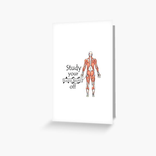 Study your Gluteus Maximus Off  Greeting Card