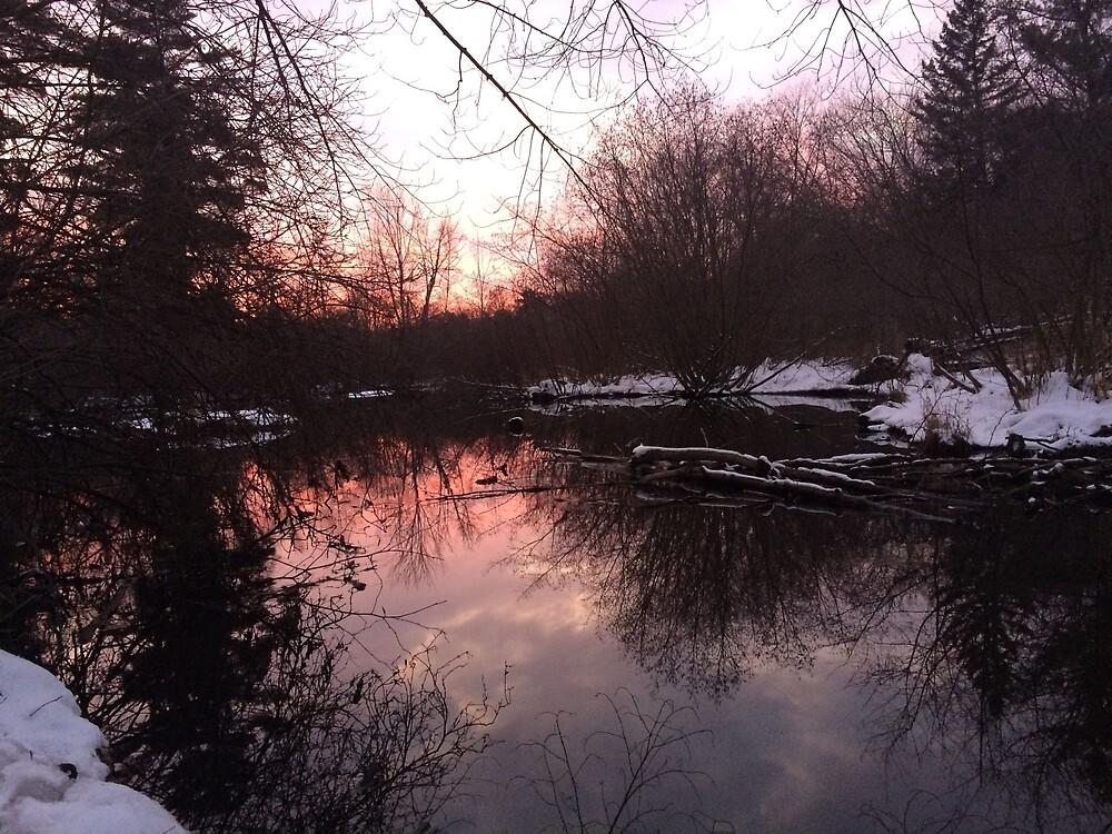 Serene Winter Sunset  by ashleyschneider