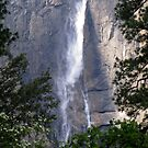 yosemite fall by Bruce  Dickson