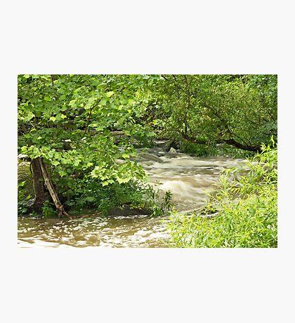 Unami Creek - Green Lane - Pennsylvania - USA Photographic Print