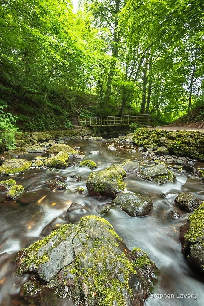Bridge at Glenoe Waterfall by Stephen Lavery