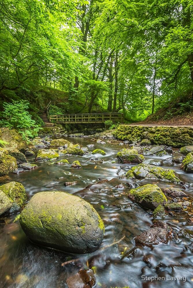 Glenoe Footbridge by Stephen Lavery