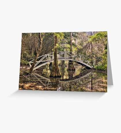 Cypress Swamp - Magnolia Plantation and Gardens Greeting Card