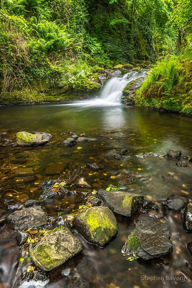 Glenoe Waterfall by Stephen Lavery