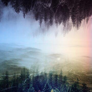 Misty forest , Foggy forest , misty landscape, wanderlust art by stohitro