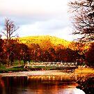 Bridge Outlook by Sophie MacLeod