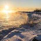 Boiling Lake Ontario zum Frühstück - III von Georgia Mizuleva
