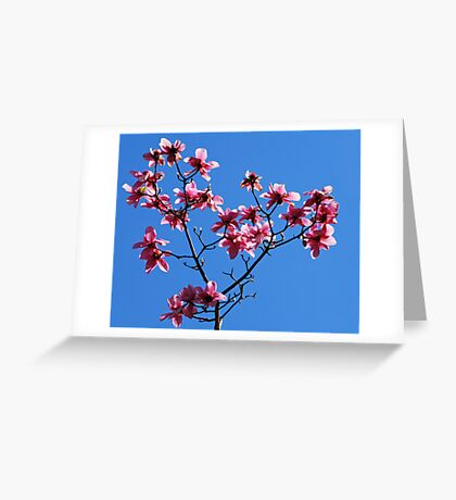 magnolificent Greeting Card
