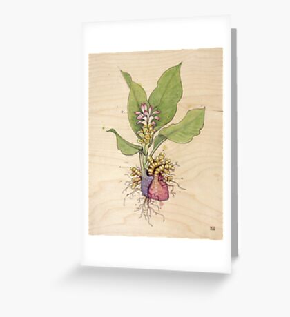Turmeric Heart Greeting Card