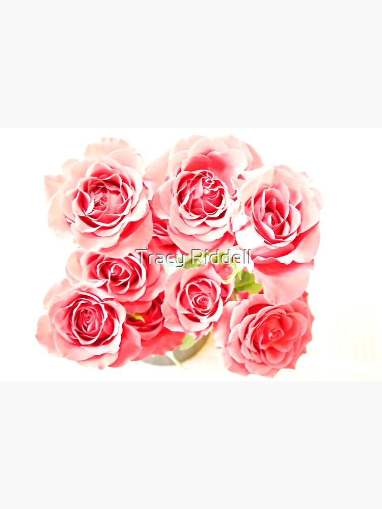 Rose Blooms by taos