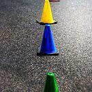 Primary Pylons by Bob Larson