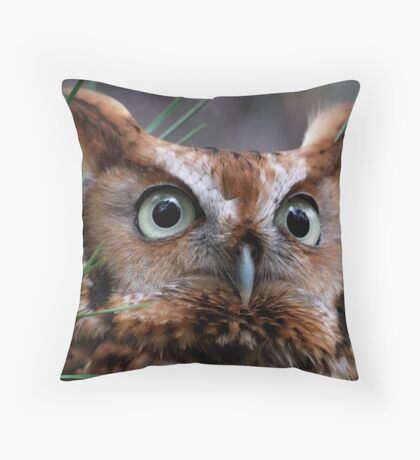 A Screech Owl Named Lana Throw Pillow