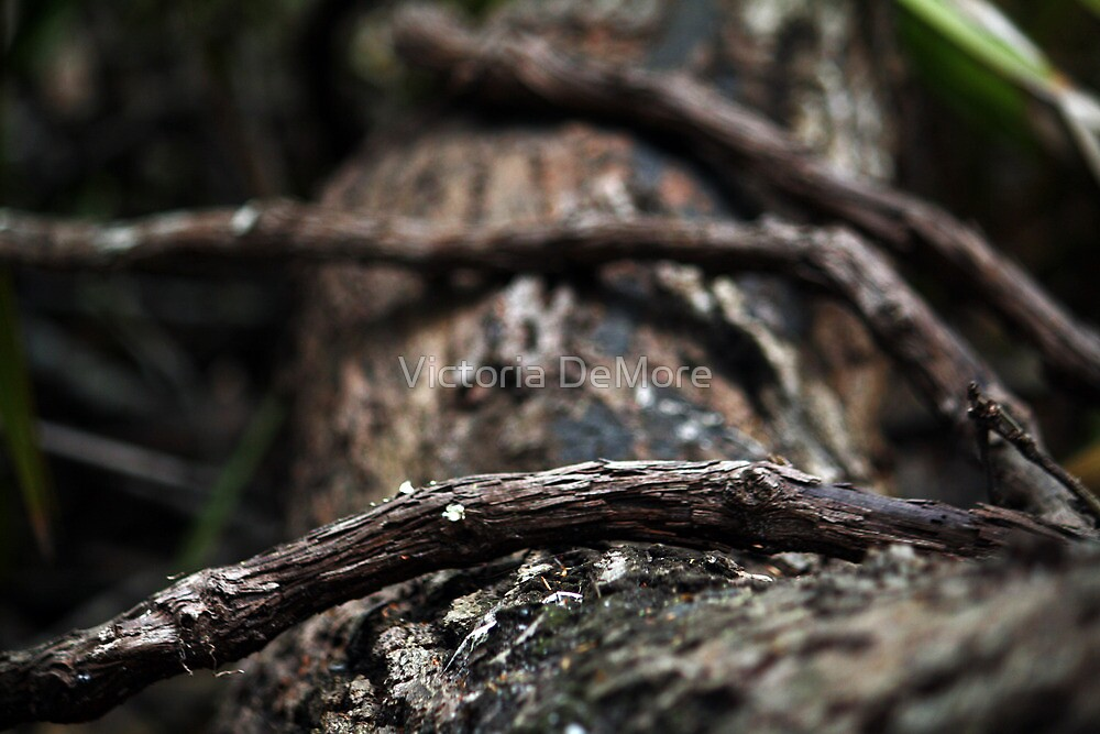 Wooden Fingers by Victoria DeMore