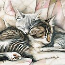 Sleeping Kittens by Charlotte Yealey
