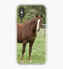 Donner - Silver Creek Ranch, Ottawa, Ont iPhone Case