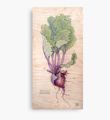 Heart Beet Canvas Print