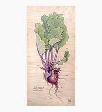 Heart Beet Photographic Print