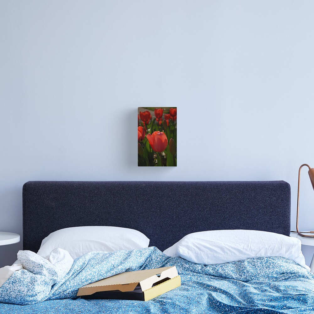 Lit From Within Canvas Print