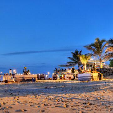 Beach Wedding - Castaway Island, Fiji by tiggatim