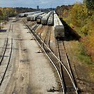Railroad Switchyard by Stephen D. Miller