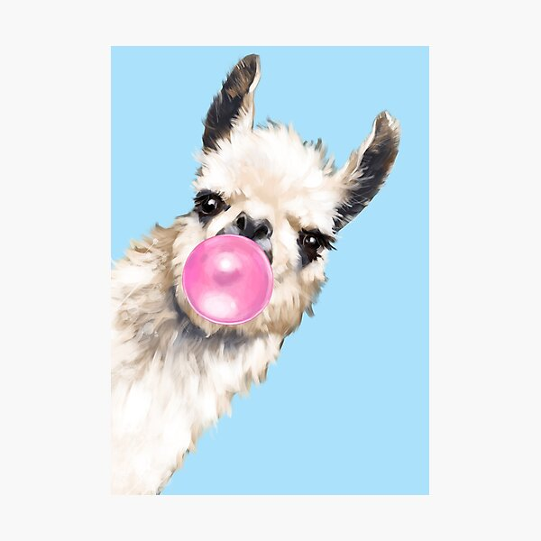Bubble Gum Sneaky Llama in Blue Photographic Print