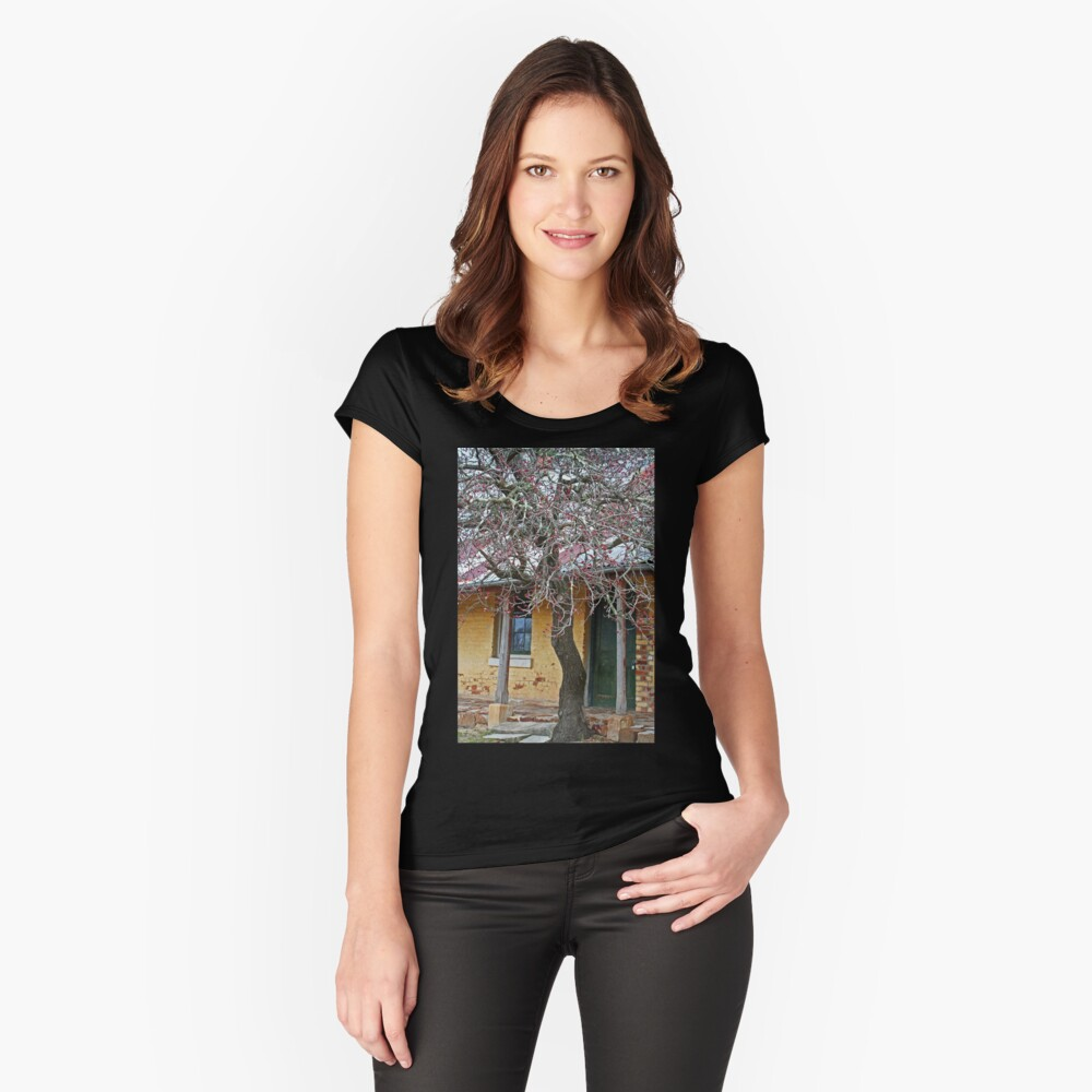 Old Inn Women's Fitted Scoop T-Shirt Front
