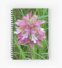 Magical Little Bee Balm - View Larger Spiral Notebook