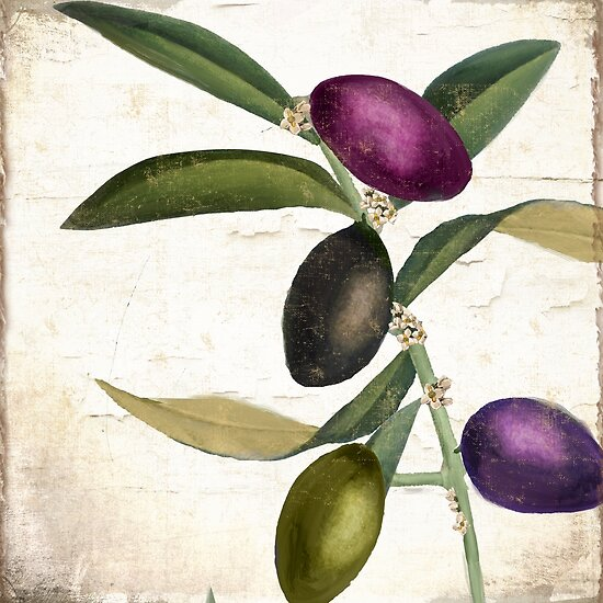 Olive Branch II by mindydidit