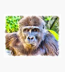 Bonobo Watercolor Photographic Print