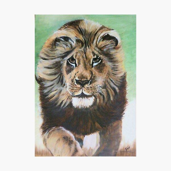 Lion running. Photographic Print