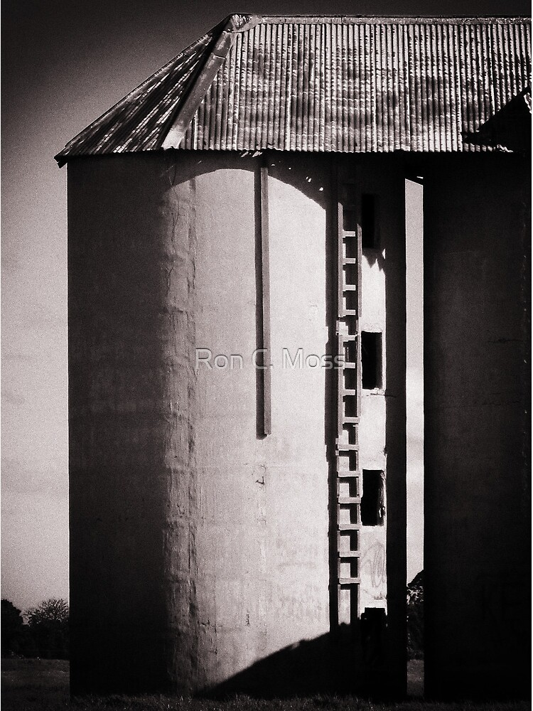 Shoalhaven Silo by ronmoss